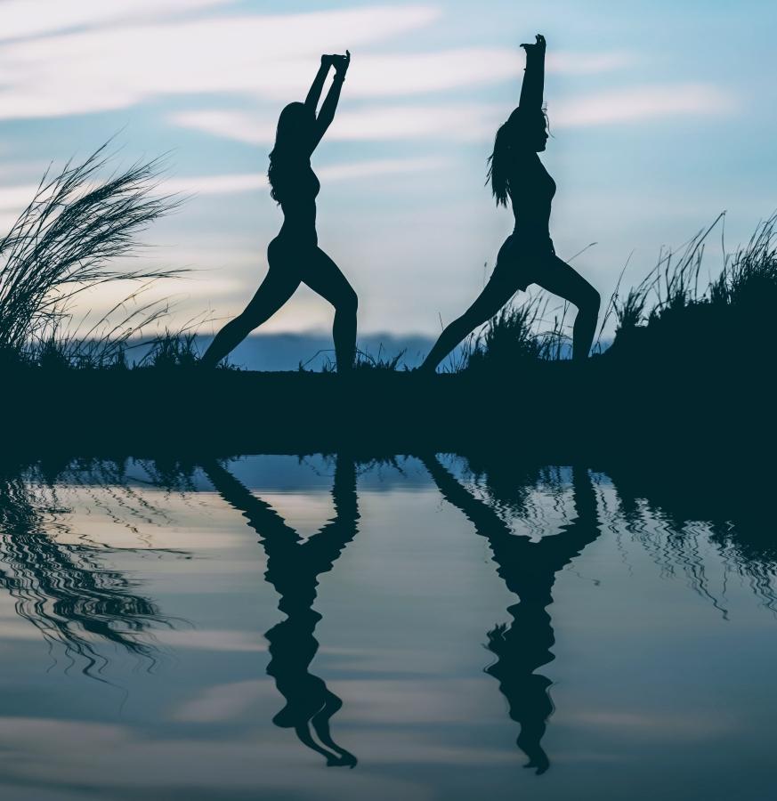 Move & Mind yogahouding Krijger 2